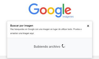 buscador de imágenes
